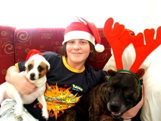 Xmas pic with dogs 3