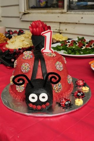 Lucy's birthday cake