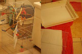 Barrys cage dismantling