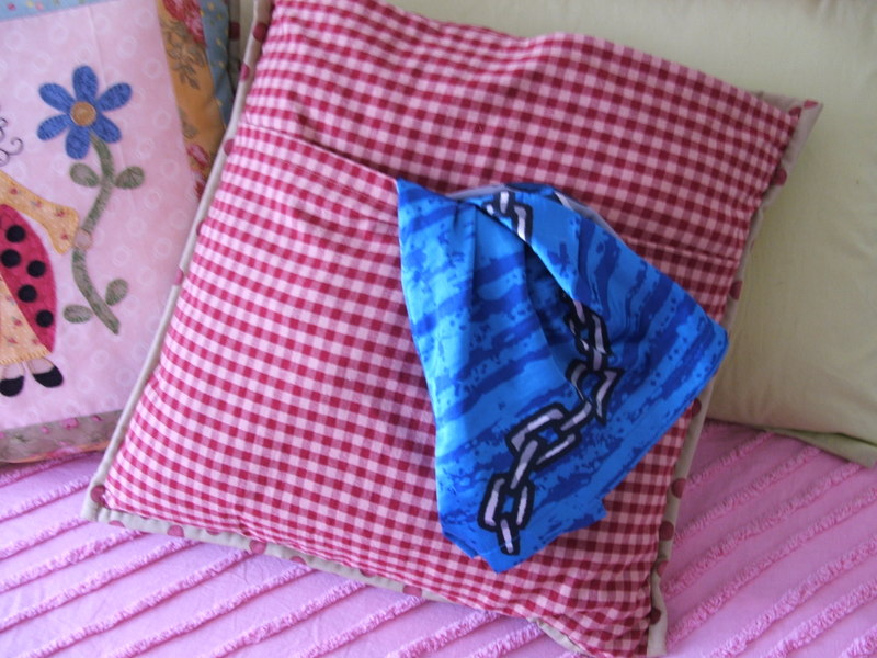 Bed_bugs_pillows_020